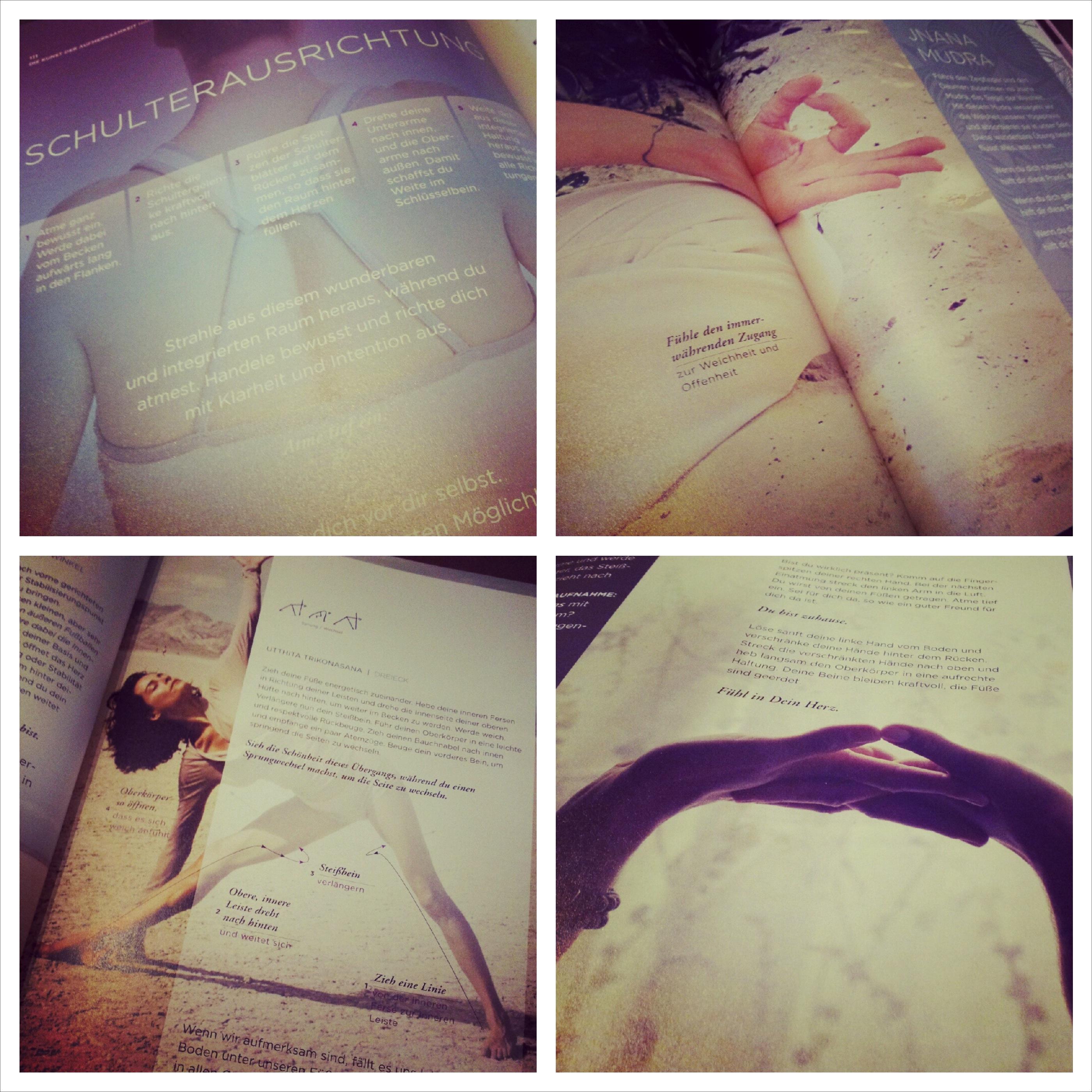 Buch II