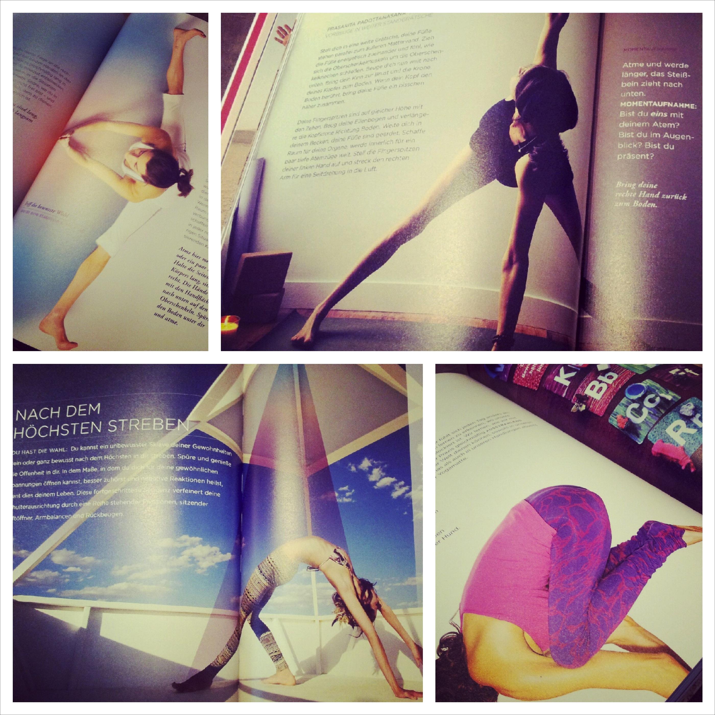 Buch III