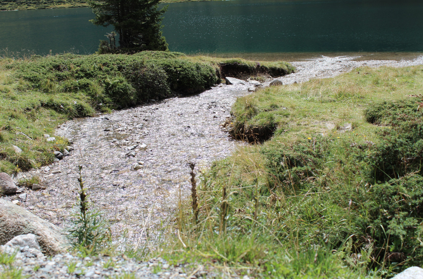 29 Natur Bach Landschaft Osttirol