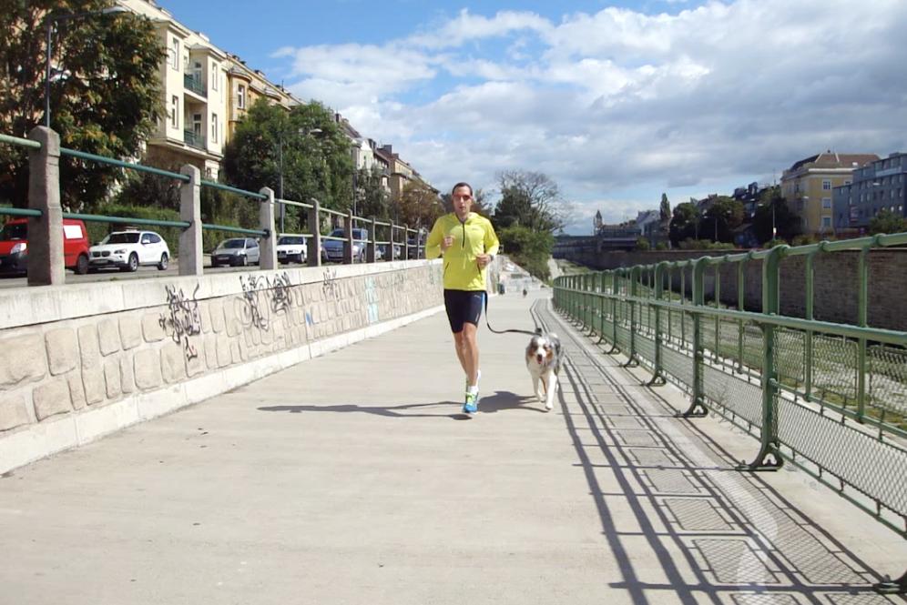 24 Laufen mit Hund