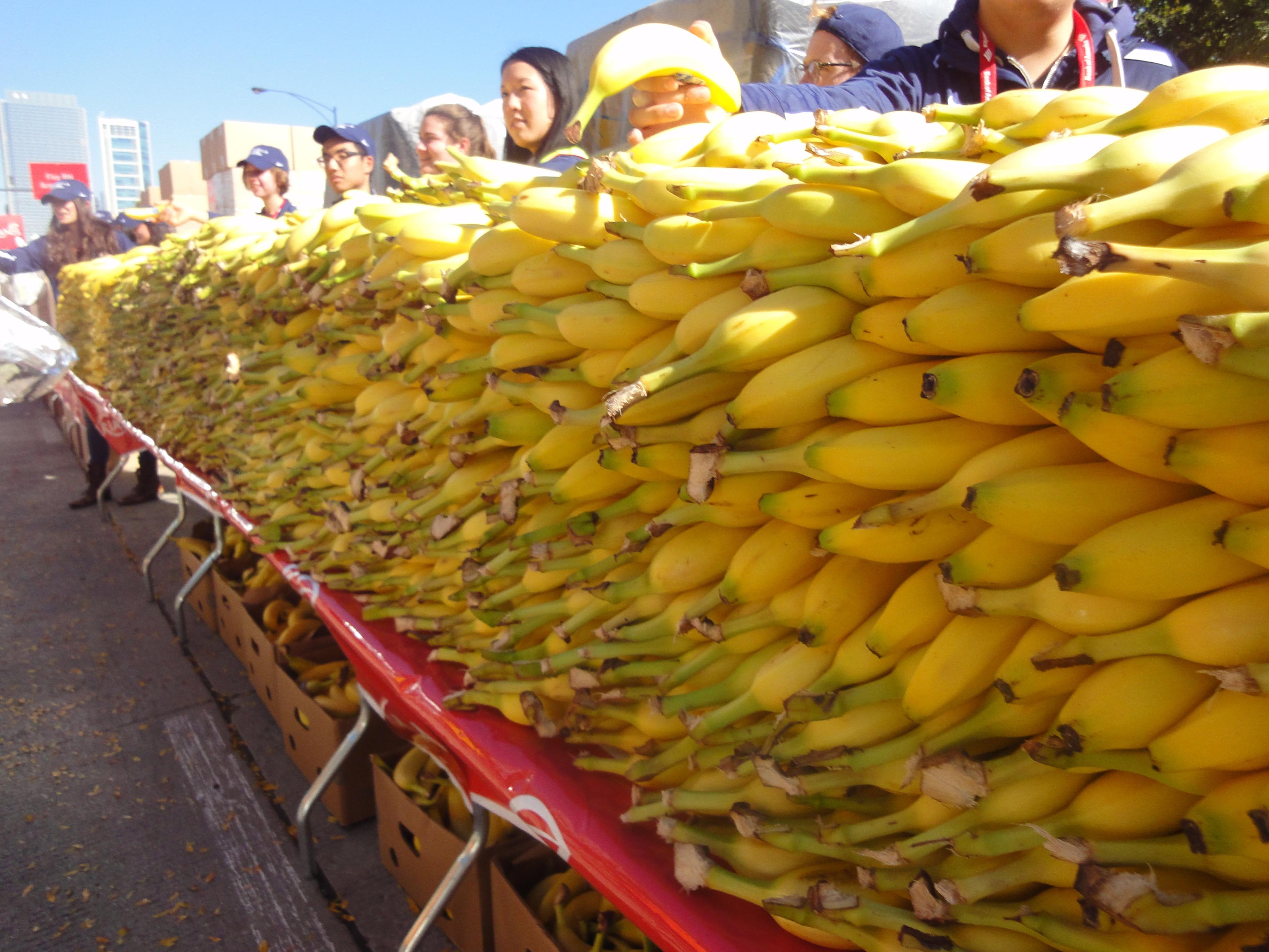 Jede Menge Bananen