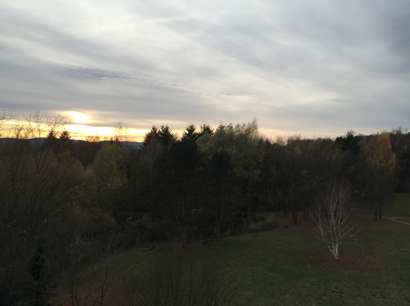 5 Ausblick aus dem Zimmerfenster Teutoburger Wald