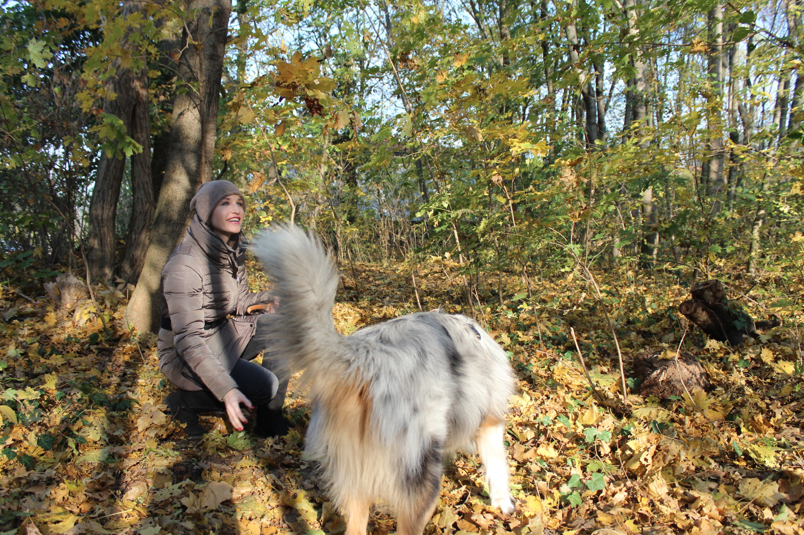 8 Outdoor Fun mit Hund