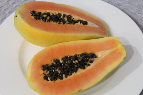14 Papaya Formosa Hofer