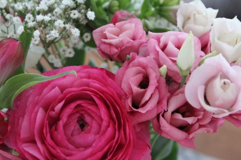 23 pinke Blumen Ranunkel