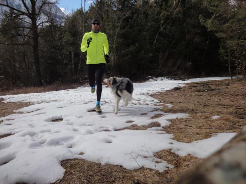 6 Laufen mit Hund