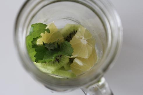 2 Kiwi Zitrone Kräuter Wasser
