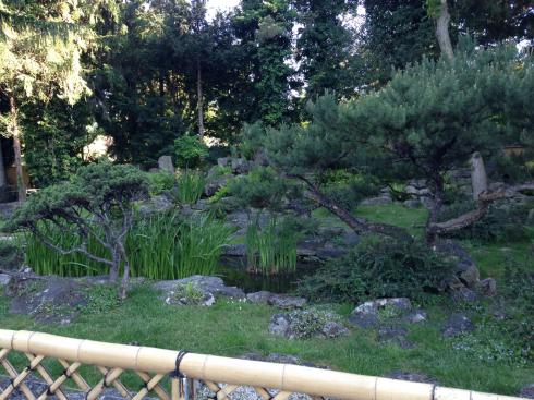 29 Japanischer Garten Schönbrunn