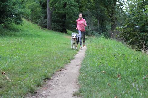 1 Laufen mit Hund