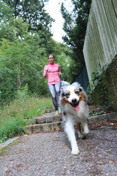 4 Laufen mit Hund Stiegen