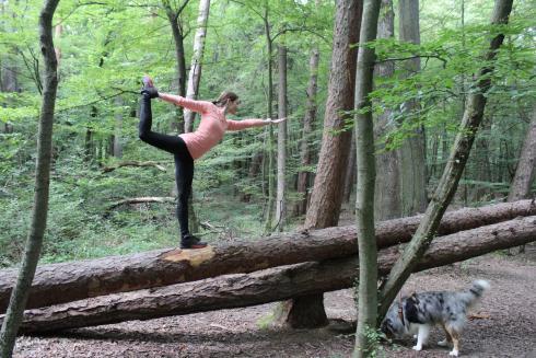 Tänzer auf Baumstamm Yoga im Wald
