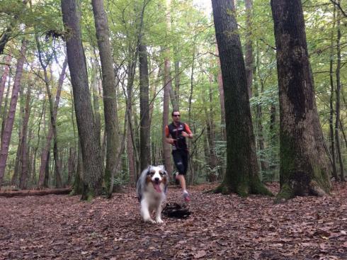 26-outdoor-wald-wien-laufen-mit-hund