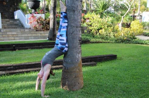 20-handstand-baum