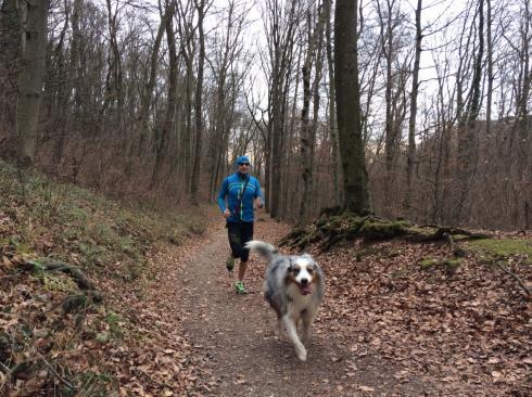 29-laufen-mit-hund-im-wald