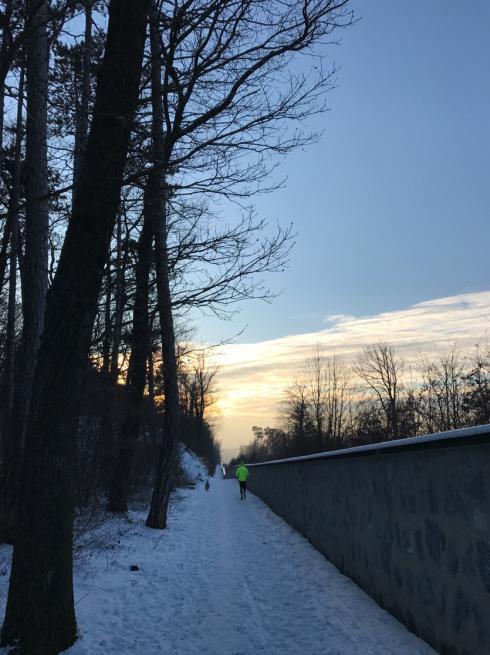 19 Laufen im Winter Wien
