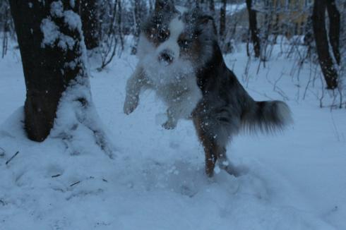 29-snow-fun