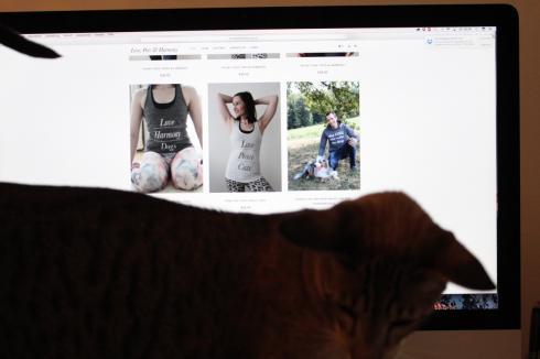 4-love-pets-harmony-onlineshop