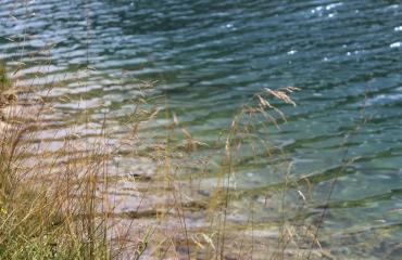 See Sommer Meditation Entspannen