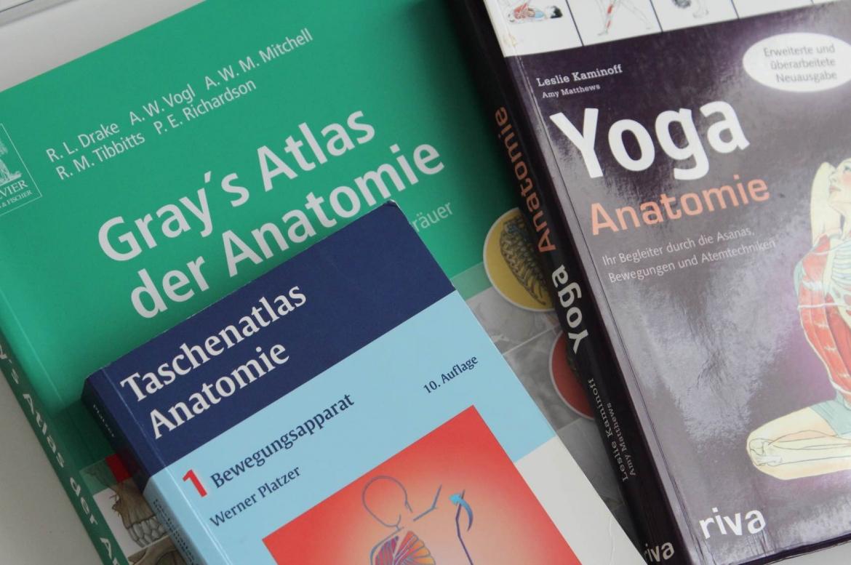 Anatomiebücher