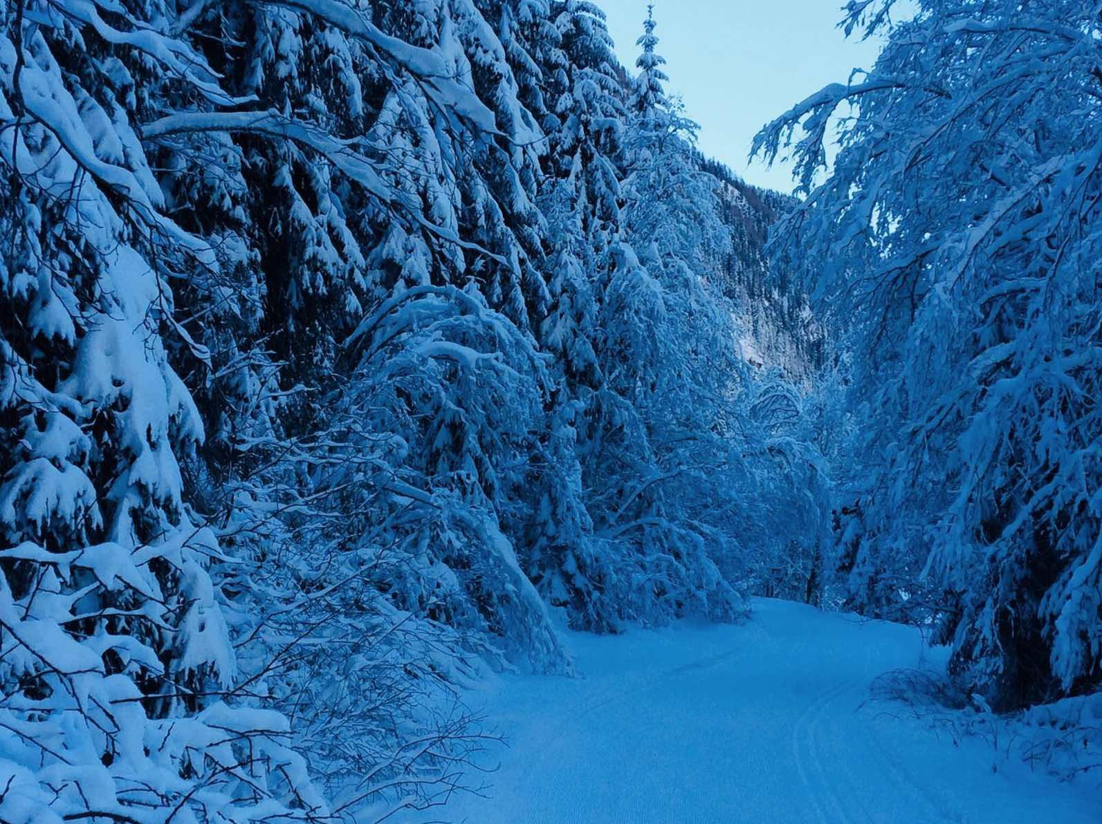 Winterzeit Winter Feber