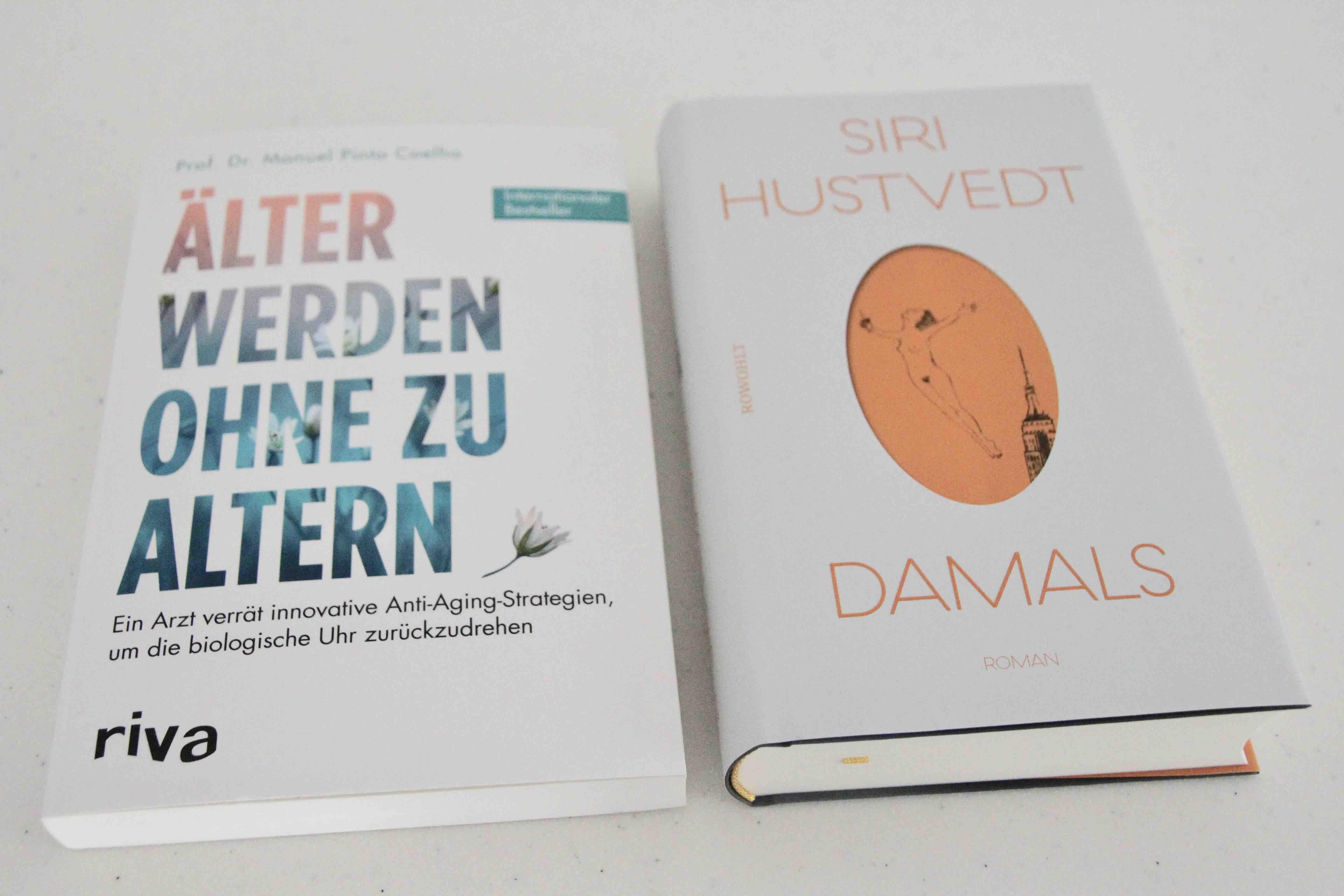 Neues Buch Siri Hustvedt