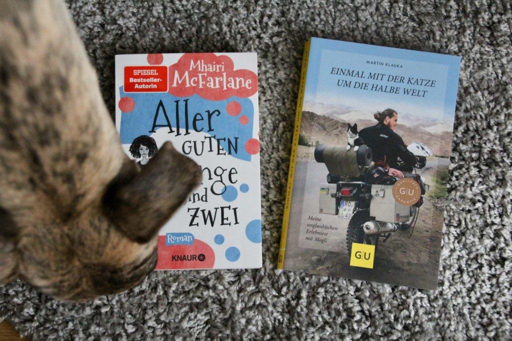 Bücher Suchtipps