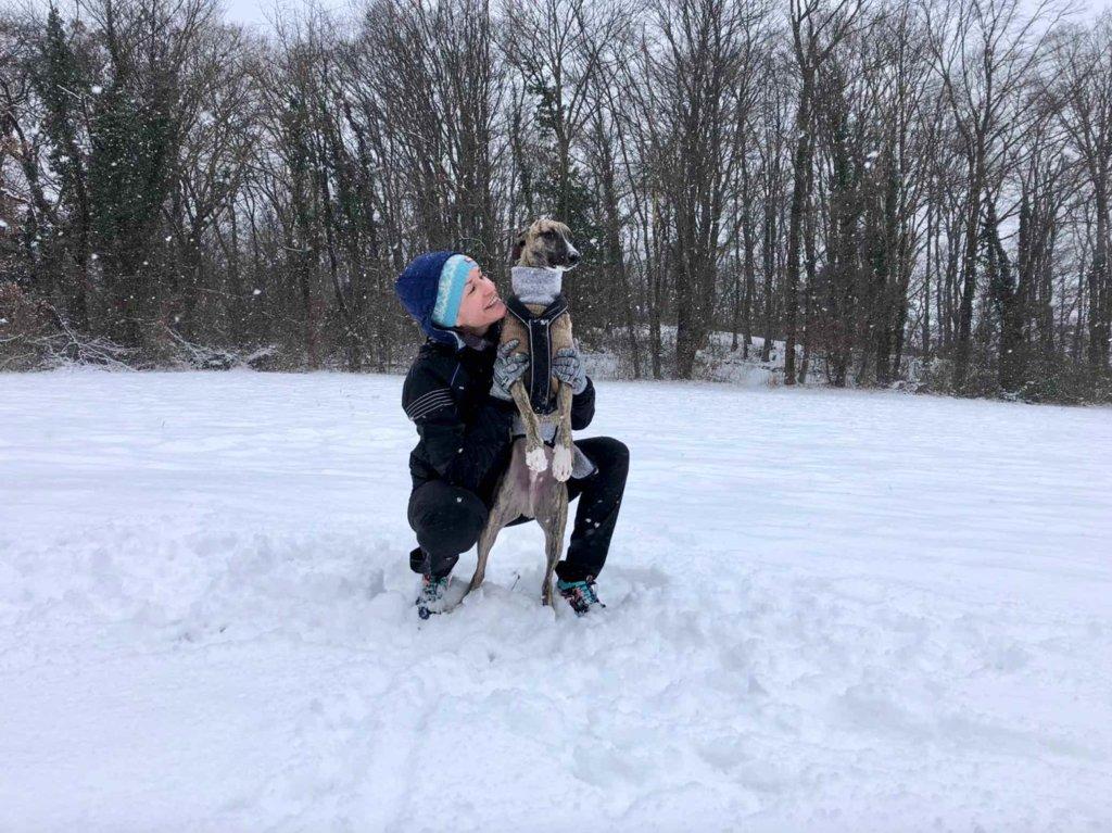 Hundeliebe Whippet Winter